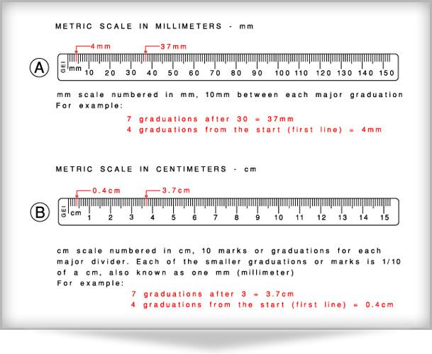 Millimeter Ruler Related Keywords & Suggestions - Millimeter Ruler ...
